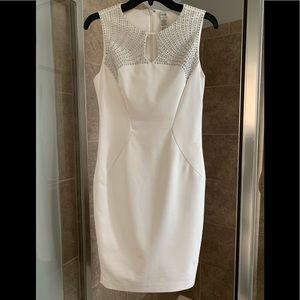 Cache studded dress